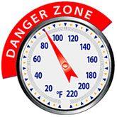 BBQ Meat Danger Zone